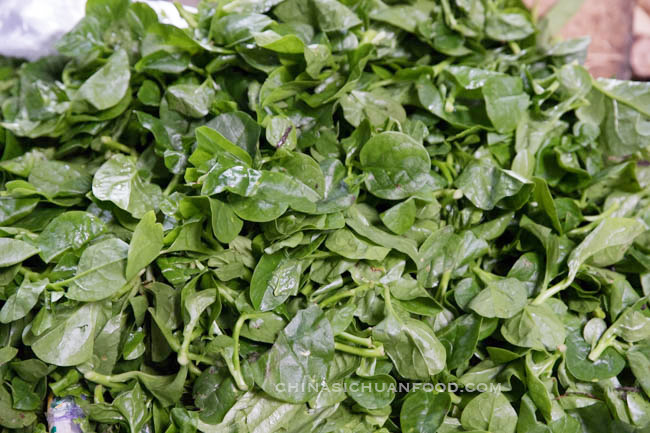 Malabar spinach|chinasichuanfood.com