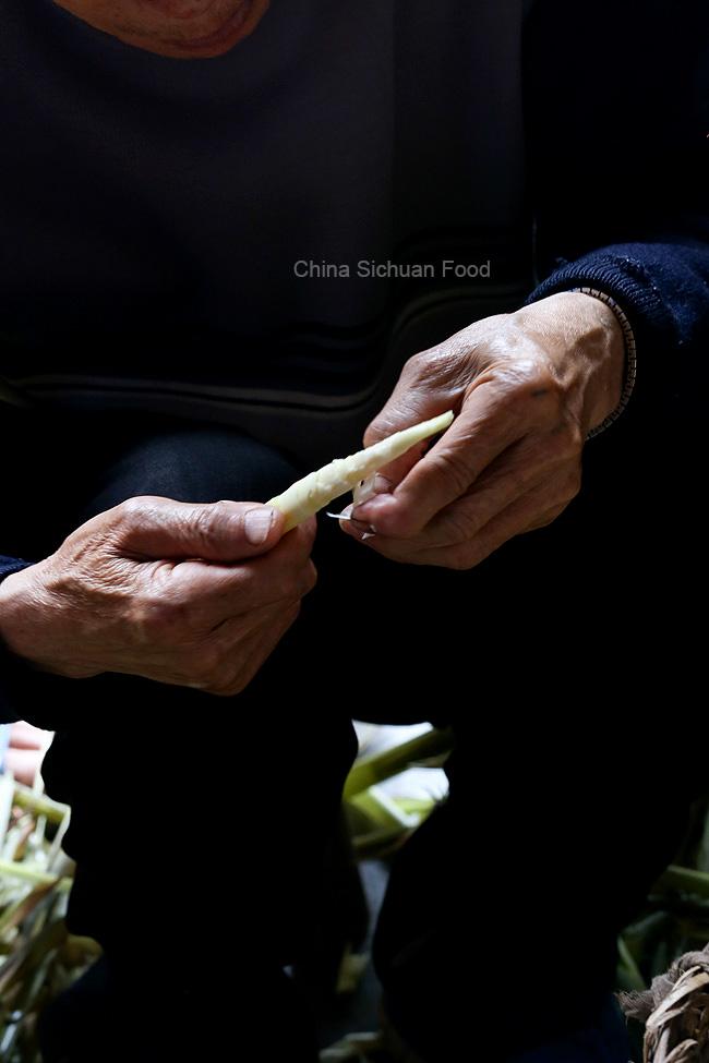 Srping bamboo shoots