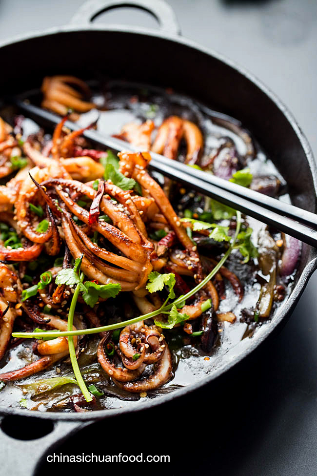 braised squid |chinasichuanfood.com