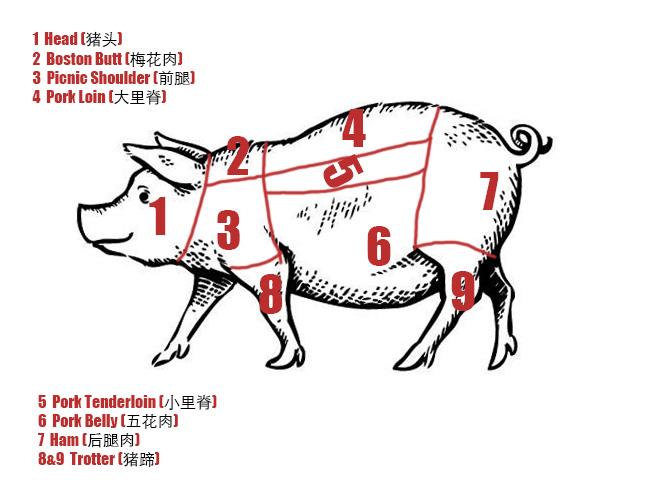 Chinese pork cut|chinasichuanfood.com