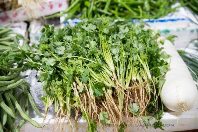 Chinese coriander|chinasichuanfood.com